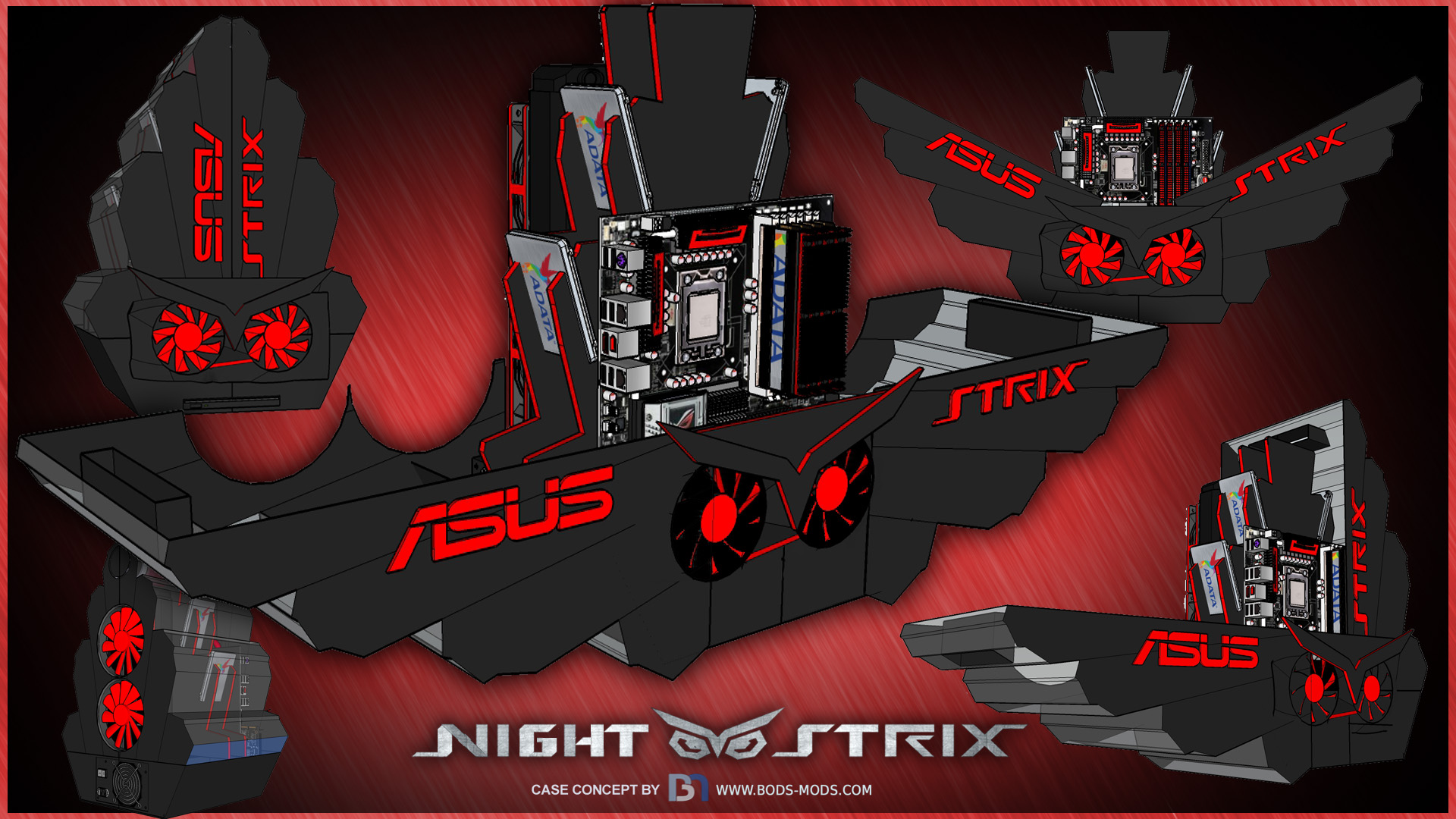 Strix-Concepta.jpg